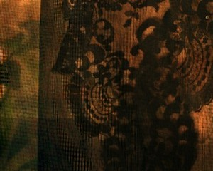 Mantilla Close-Up